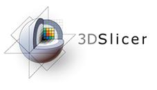 3DSlicer_Logo