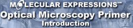 MolecularExpressions_Logo